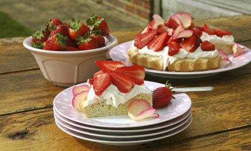 Strawberry shortcake with cream and rose petals Keywords: summer soft fruit berries shortbread location garden al fresco dessert baking